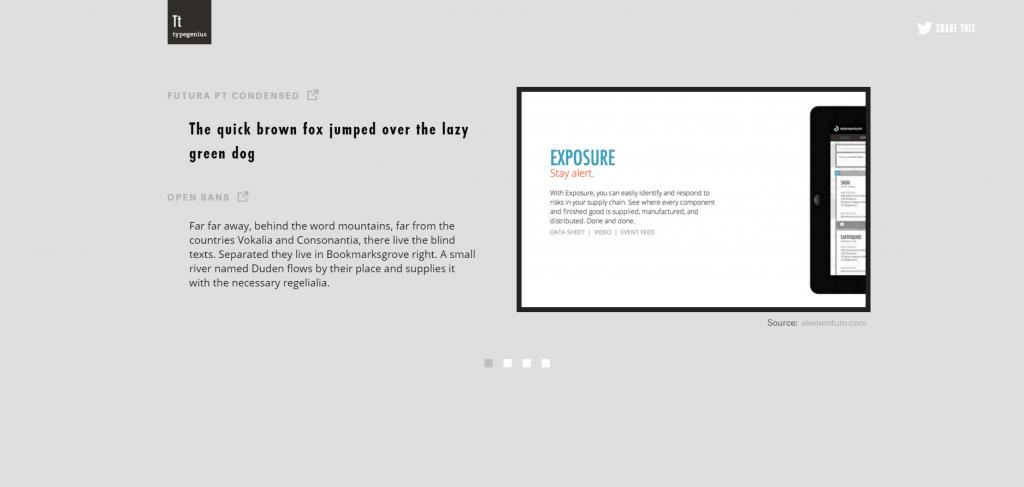 Screenshot of TypeGenius